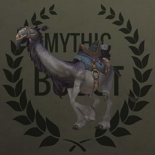 Buy Grey Riding Camel Boost